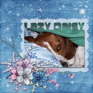 lazy_daisy