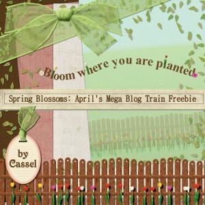 cass-spring-blossom