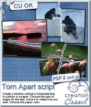 cass-TornApart