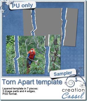 cass-TornApart-sample
