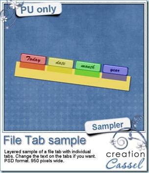 cass-FileTab-sample-date