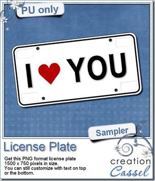 cass-LicensePlate-sample