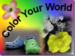 ColorYourWorld