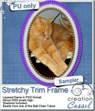 cass-StretchyTrim-sample