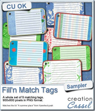 cass-FillnMatch-sample-tags