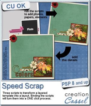 cass-SpeedScrap