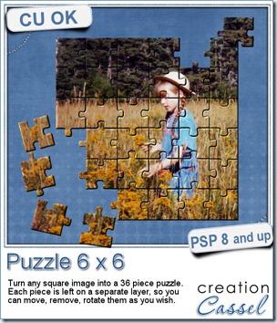 cass-Puzzle6x6