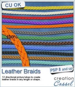Leather Braid picture tubes for Paintshop Pro