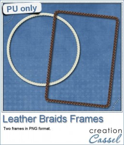 Leather Braid Frames in PNG format for free