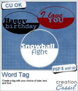 Word tag script for Paintshop Pro