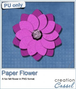 http://creationcassel.com/blog/wp-content/uploads/2015/05/cass-PaperFlower-Sample-Pink-257x300.jpg