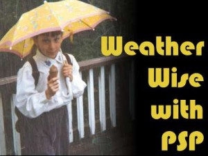 WeatherWise-400