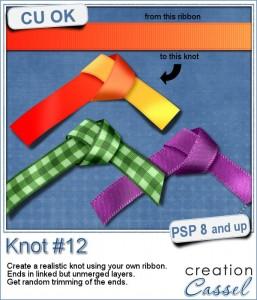 Knot 12 - Paintshop Pro script