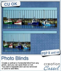 Photo blinds script for Paintshop Pro