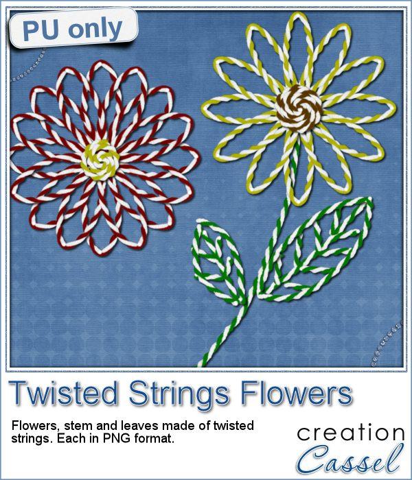 cass-TwistedStrings-Flowers