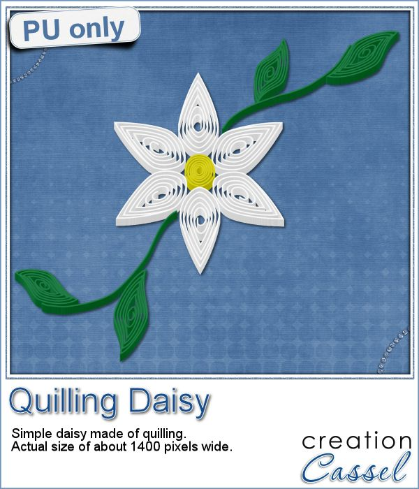 Qulling - Daisy in png format