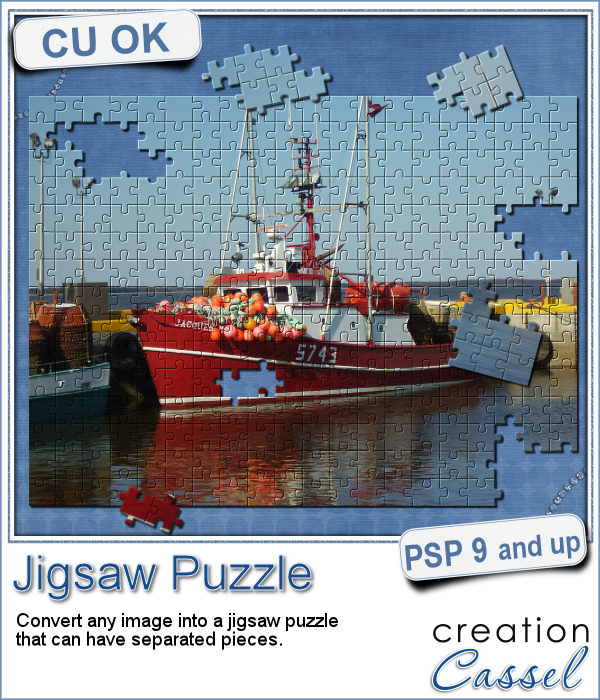 Jigsaw puzzle script for Paintshop Pro