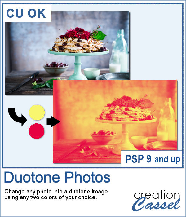 Duotone script for Paintshop Pro