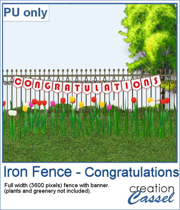 Iron fence with congratulations in png format