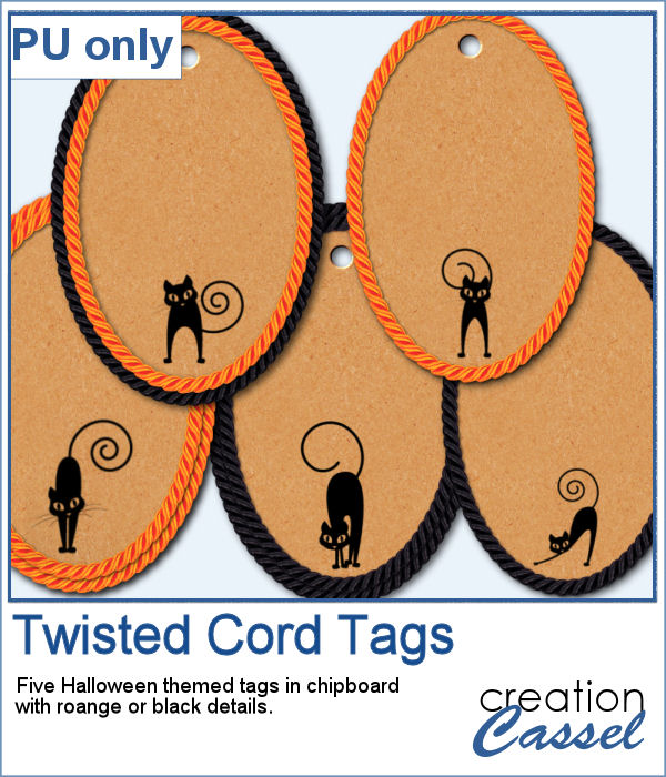 Halloween tags with black cats