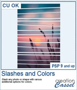 Slashes script for PaintShop Pro