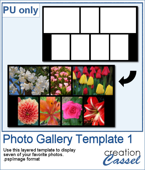 Photo Gallery template in pspimage format